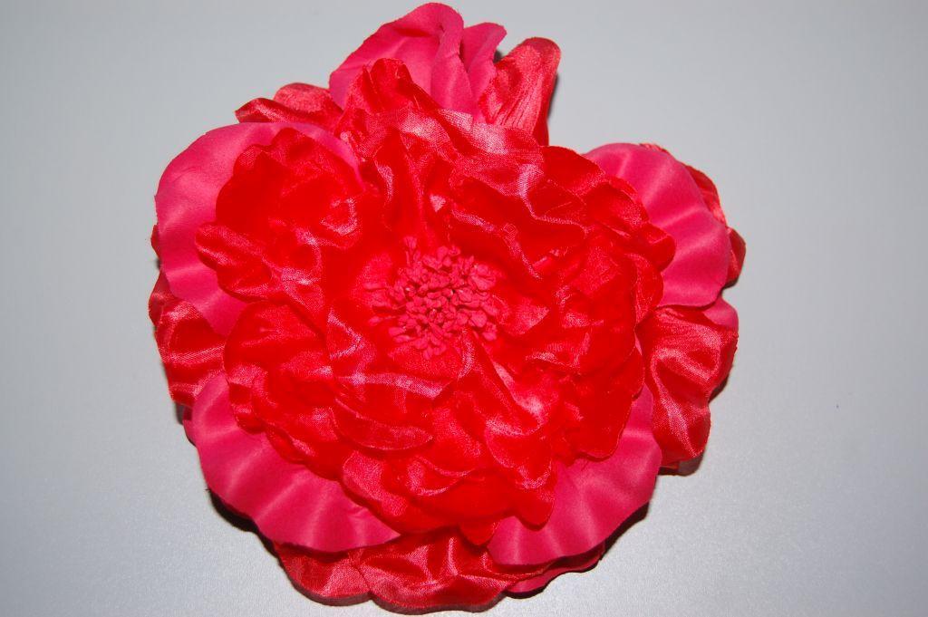 Flower wonders Red