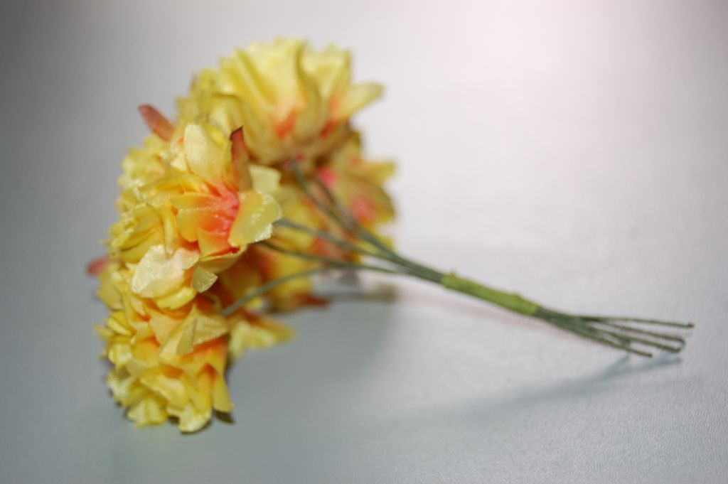Yellow carnations bouquet