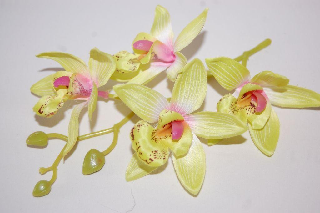 Corsage beautiful orchid lemon