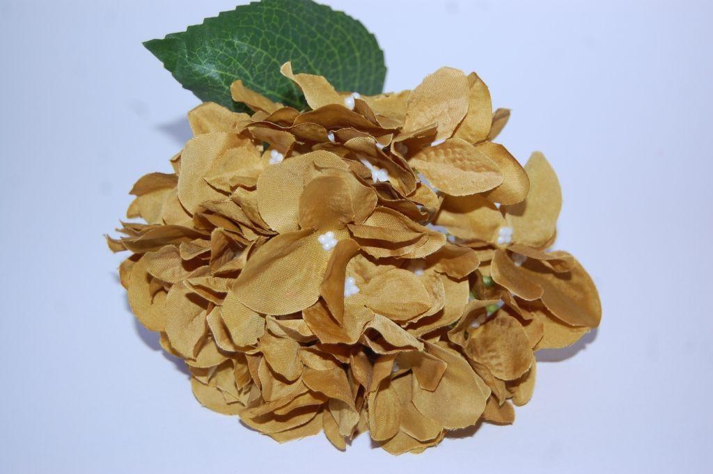 Ramillete Capuchinas albero dorado