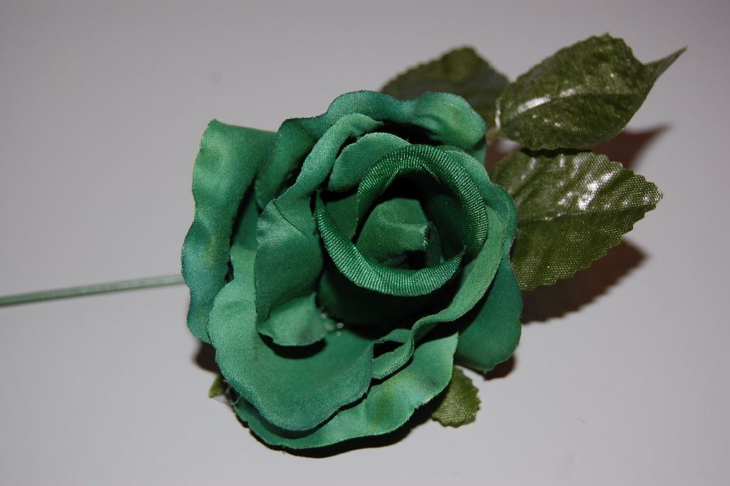 Small green flower