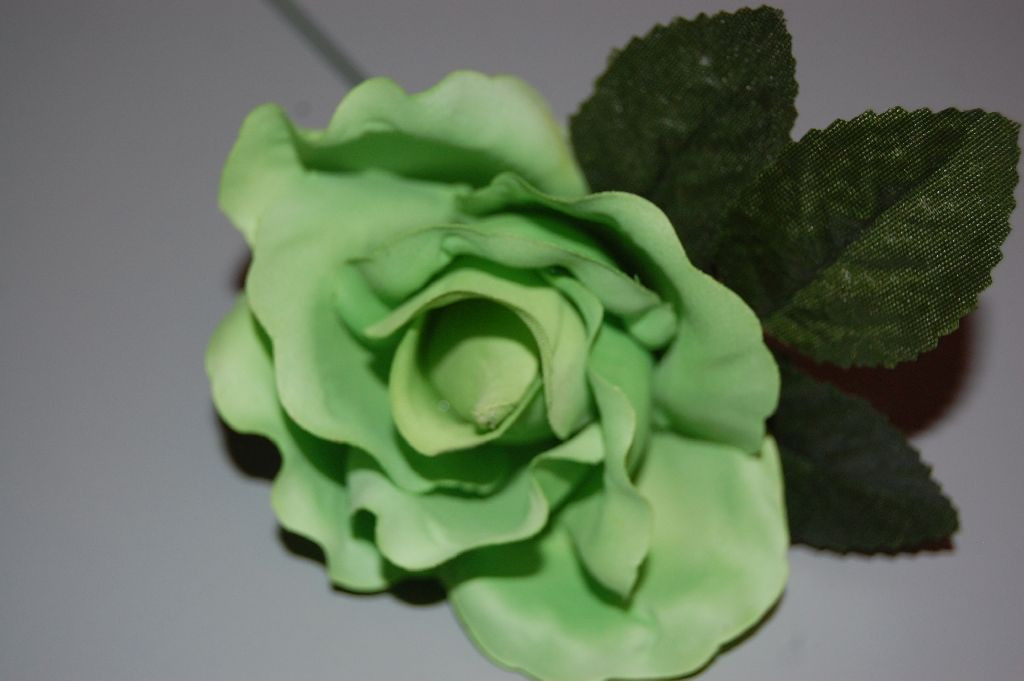 Flor pequeña pistacho