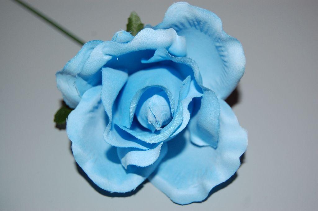 Flor pequeña celeste 1